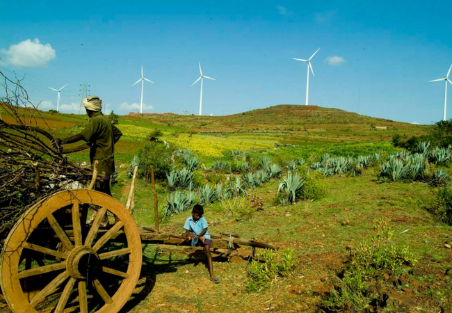 SECI Auctions 1,000 MW Wind
