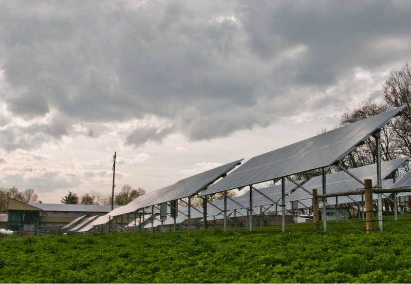 Grid-Connected Solar Project