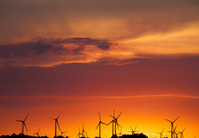 Gujarat High Court Gives Go-Ahead to GUVNL's 500 MW Wind Auction