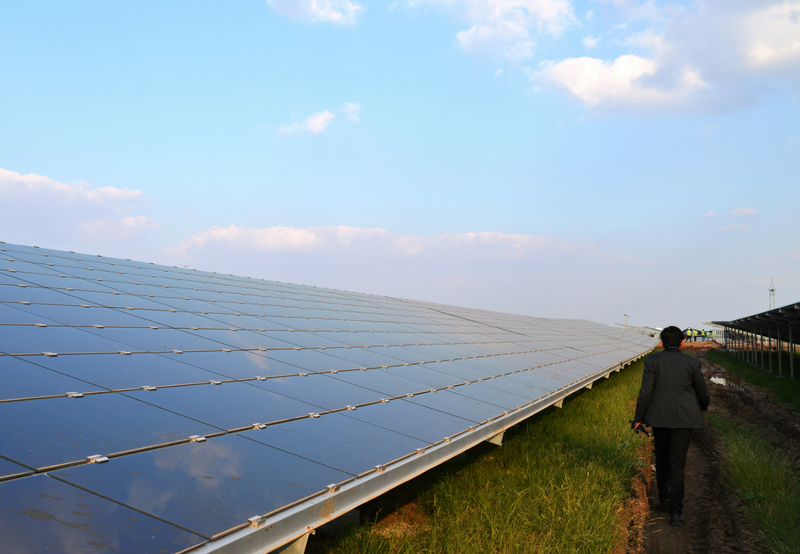 India's Solar Auction Activity Falls 55% in October While Tenders Rise 25%