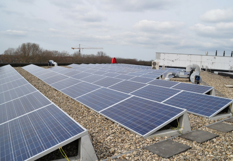 After January Surge, Solar Tender Activity Slowed in February