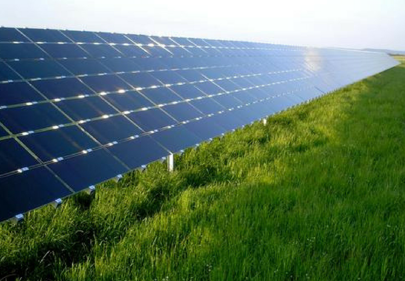 TEDA Tenders 50 MW of Grid-Connected Solar Projects to be Developed in Tamil Nadu