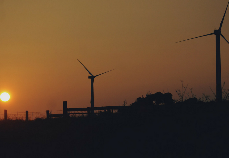 Gujarat Annuls 500 MW of Wind Tender with Greenshoe Option