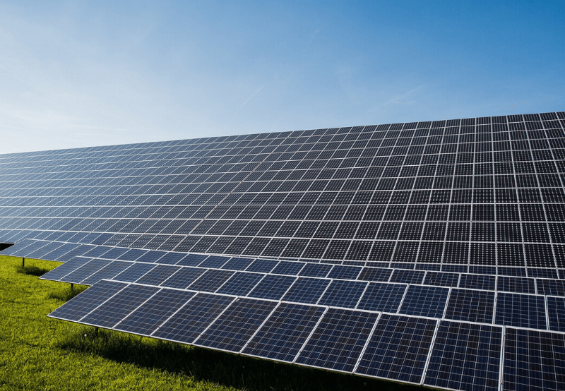 India Signs MoU with IEA to Enhance Innovation for Clean Energy Transition