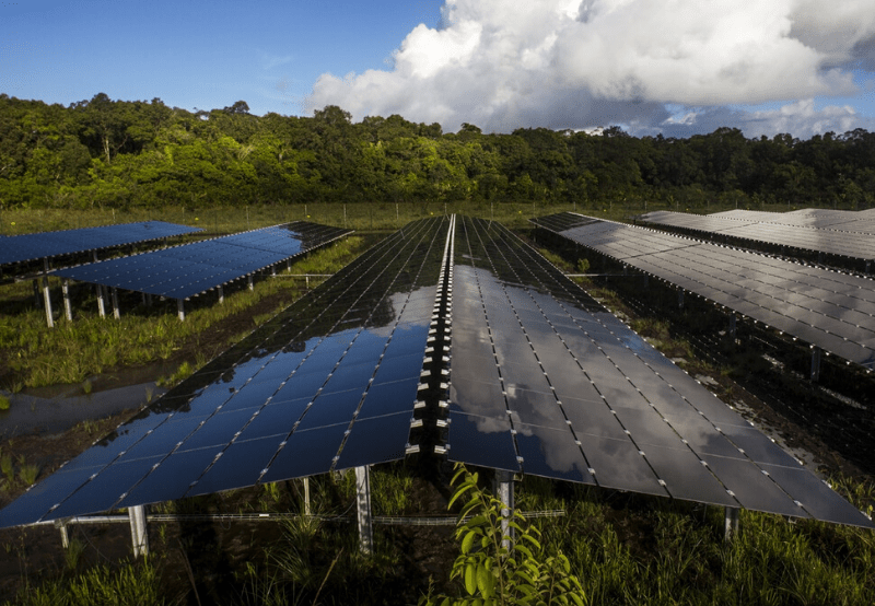 Solar Project Developers Request Government to Reconsider Proposal on Tariff Caps