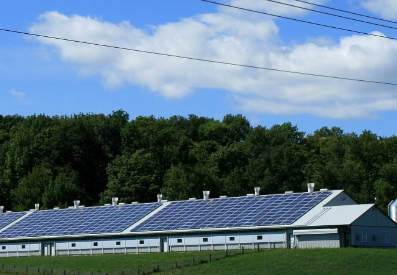 Prism Johnson Acquires 30% Stake in Cleantech SPV to Build 22 MW of Captive Solar Projects