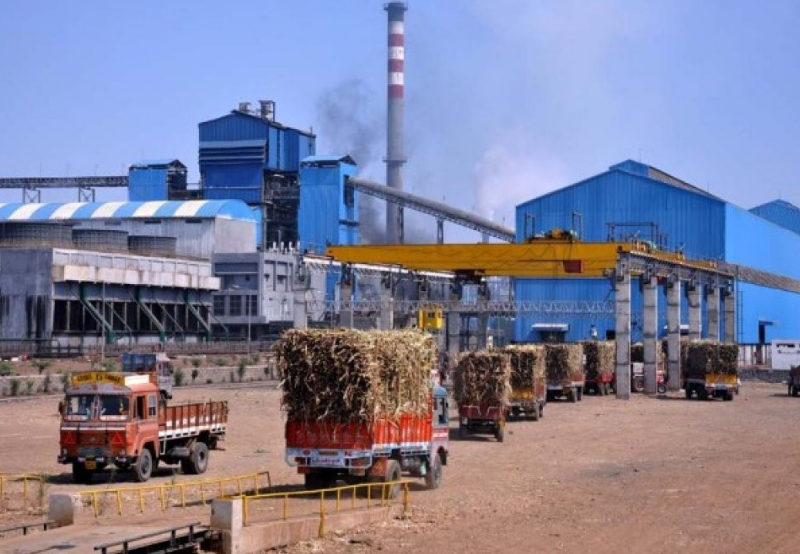 Madhya Pradesh Clarifies Cross Subsidy Surcharge Exemption for Captive Power Projects