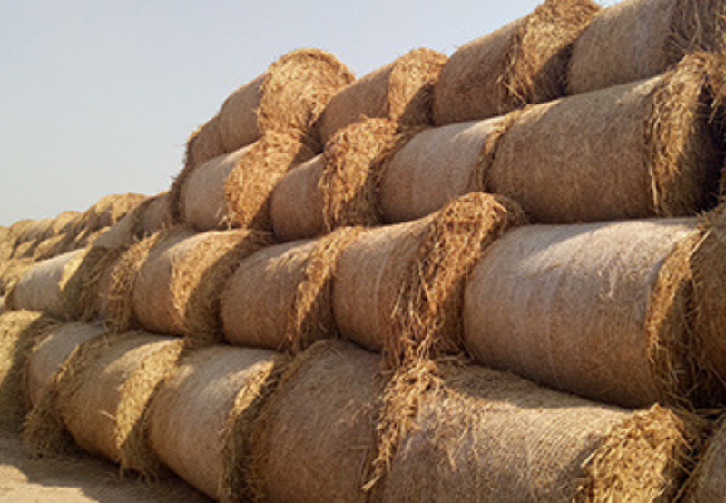 Biomass Company PRESPL to Raise Up to $10 Million in Series B Funding