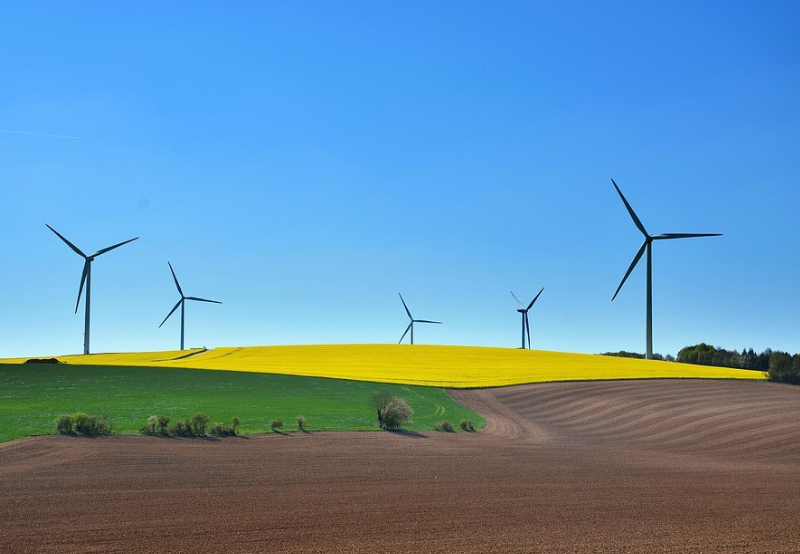 Gujarat Issues Tender for 1 GW of Wind Projects