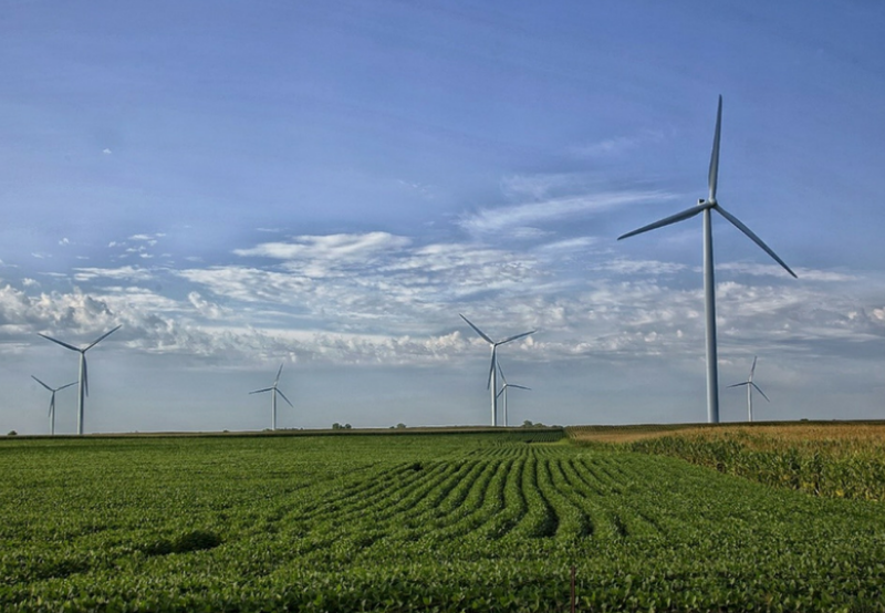 Maharashtra to Procure 500 MW of Wind Power at a Ceiling Tariff of ₹2.52_kWh