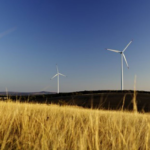 SECI's 1.8 GW Wind Tender Left Undersubscribed with Bids for Only 551 MW