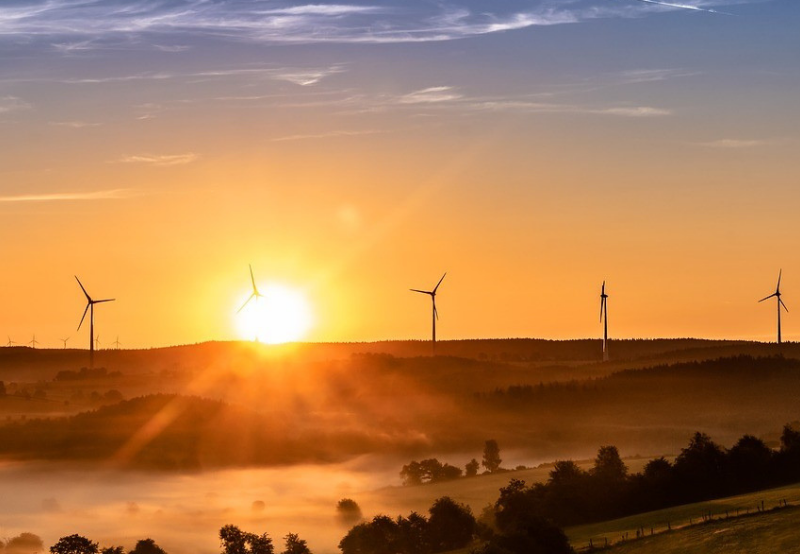 Maharashtra to Procure 500 MW of Wind Energy with a Tariff Cap of ₹2.95/kWh