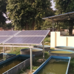 Rajasthan Proposes Purchase of Excess Power Generated by Solar Pumps at ₹3.44/kWh