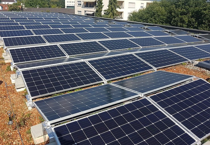 Assam Retenders 70 MW of Solar Projects Due to Low Tariff Cap