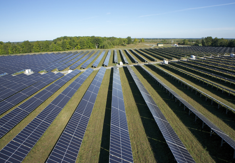 SECI's 1.2 GW Solar Tender Attracts Technical Bids from Four Developers