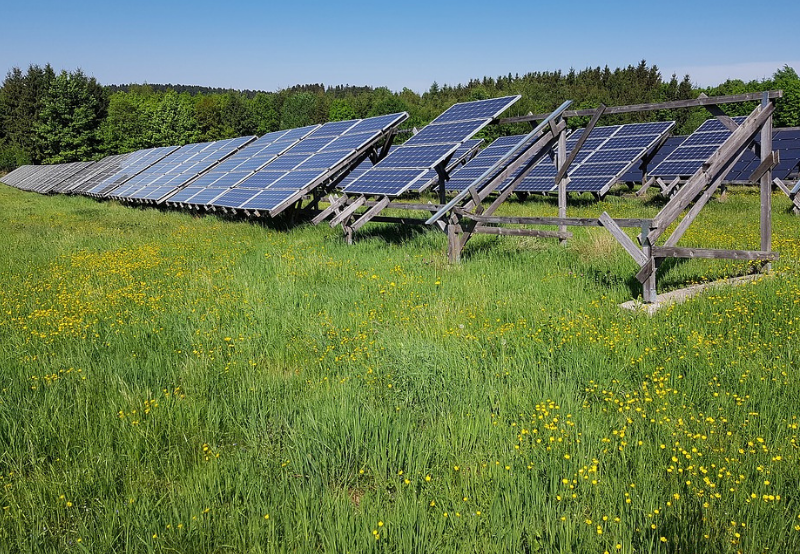 ANERT Floats Tender for 10 MW of Off-Grid Solar Projects in Kerala