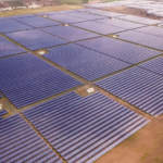 Azure Power and ReNew Power Were the Top Utility-Scale Solar Developers During 1H 2019