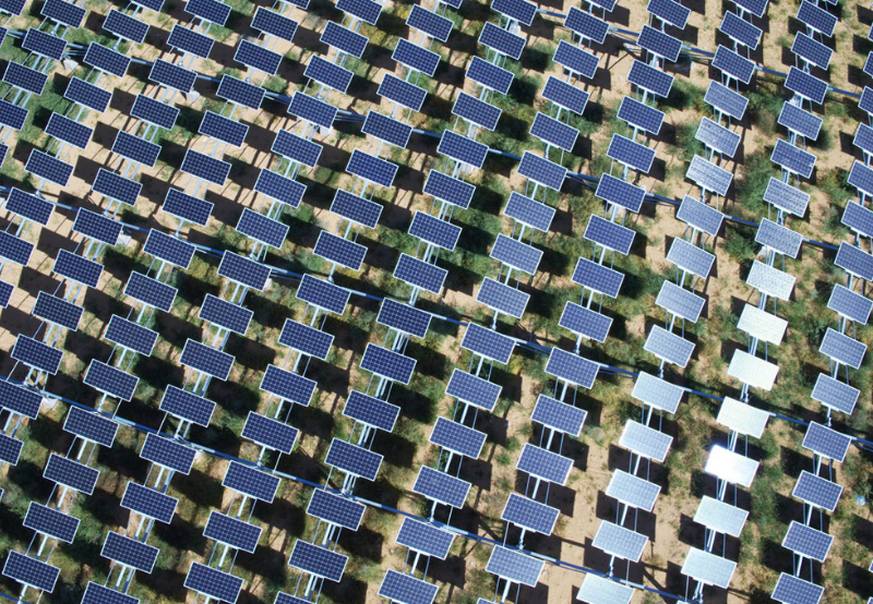 India's Solar Market Leaders Unveiled for First Half of 2019