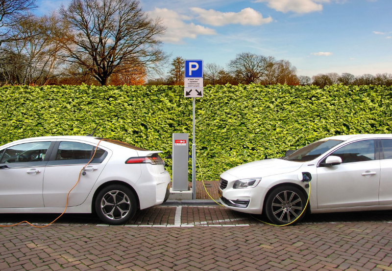 2019_ A Year of Positive Momentum for India's EV Sector