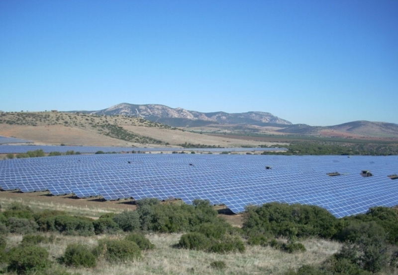 Juniper Quotes Lowest Bid of ₹2.89/kWh to Win 150 MW in Maharashtra's 500 MW Solar Auction