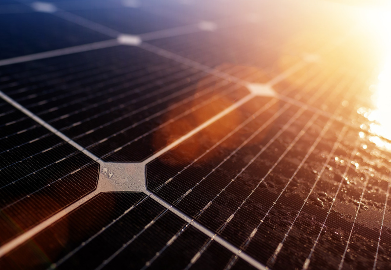 Trina and Adani Were the Leading Solar Module Suppliers in India During 1H 2019