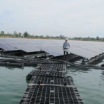 Bihar Adopts Tariff of ₹4.15/kWh for Procuring 2 MW of Power from Floating Solar Projects