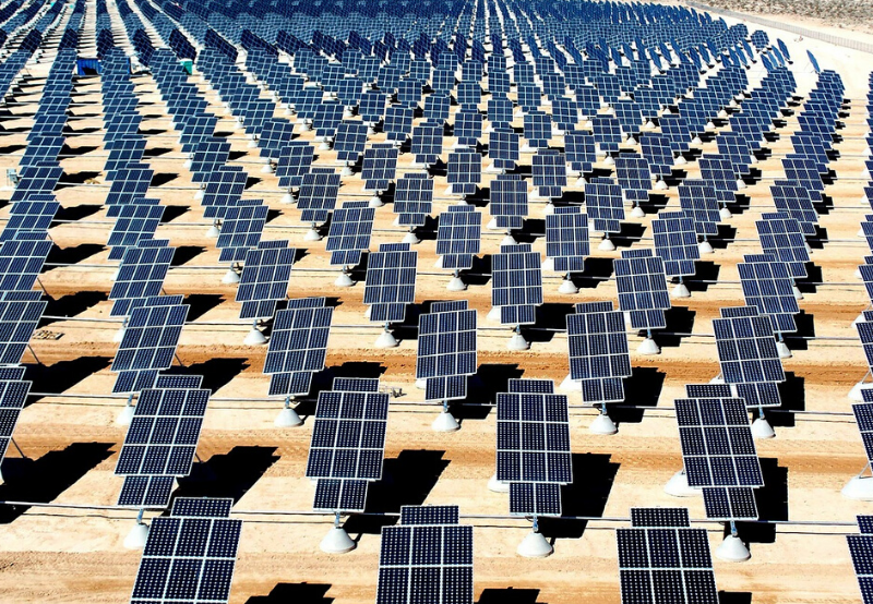 Solar Tender and Auction Activity Surged in January 2020