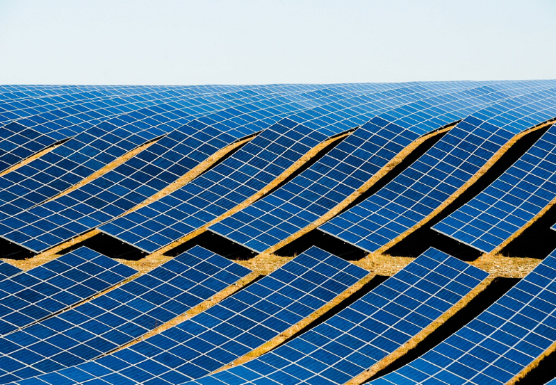 Solar Tender and Auction Announcements Declined Sharply in February