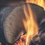 Wood Burning Can Be A Clean Source of Energy With Net Carbon Benefits: Report