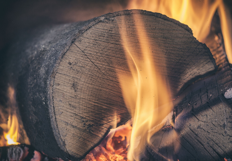 Wood Burning Can Be A Clean Source of Energy With Net Carbon Benefits_ Report