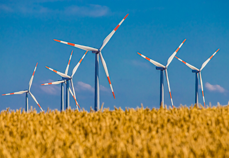 India Unlikely to Achieve its Wind Target Without Regulatory Reforms_ Report