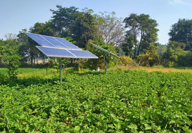 Andhra Pradesh Issues Guidelines for 10 GW of Solar Projects for State's Farmers