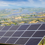 EPC Tender Announced for a 100 MW Project at Dholera Solar Park in Gujarat