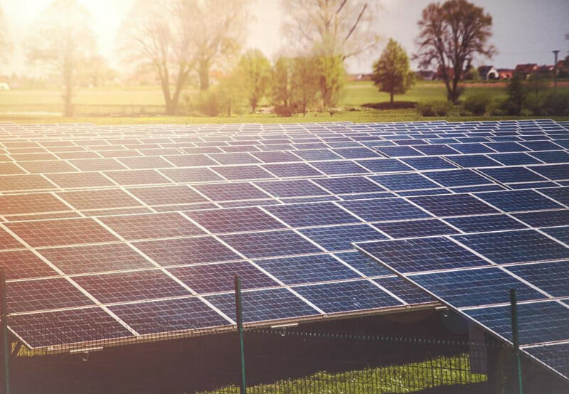 Amp Energy, Tata, Azure, and O2 Power Winners in NTPC's 1.2 GW Solar Auction