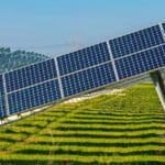 Andhra Pradesh Waives Stamp Duty, Reduces Registration Fee for 10 GW of Solar Projects