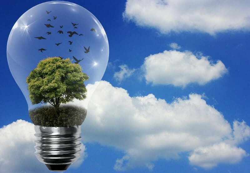 ReNew and UN Environment Program to Work Together for Renewables & Energy Efficiency