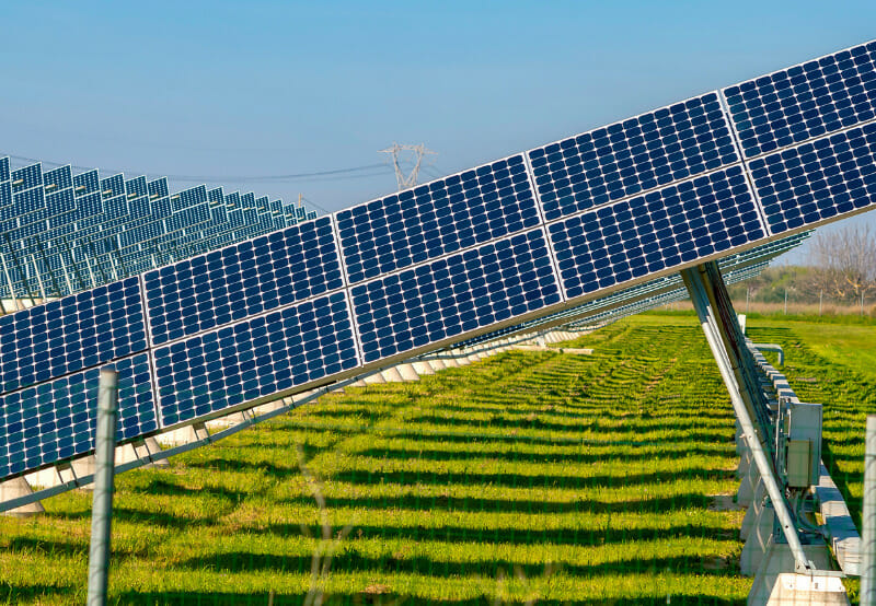 Tender Issued for a 2 MW Grid-Connected Solar Power Project in Punjab