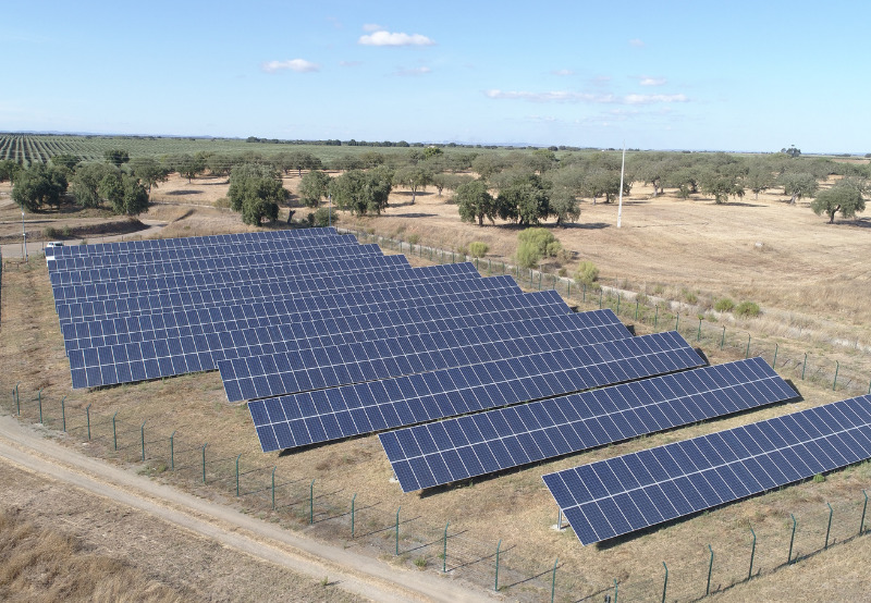 Electricity Tribunal Grants Grid Connectivity to Avaada's 100 MW Solar Project