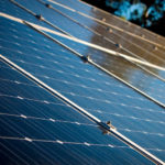 Restraining Order Thwarts Trump's Move to Remove Exemption on Bifacial Solar Modules