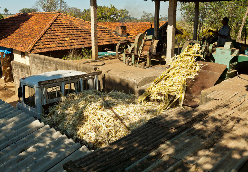 Tariff of ₹5.34_kWh to Apply on Tamil Nadu's Bagasse-Based Cogeneration Projects