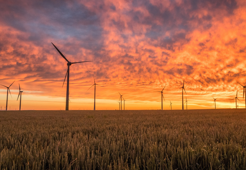 Tamil Nadu DISCOM Asked to Pay Late Payment Surcharge to Wind Generator