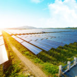 Gujarat Floats Tender for 200 MW of Solar Projects at Dholera Solar Park