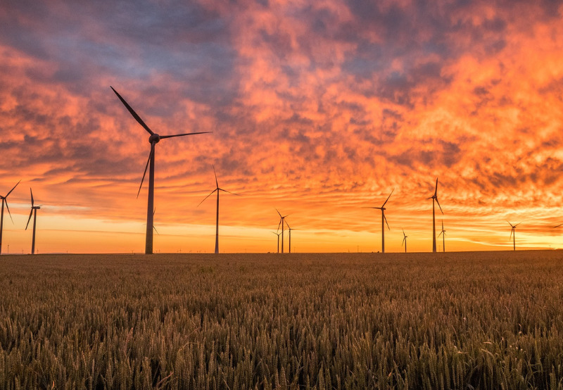 Tamil Nadu DISCOM Ordered to Clear Outstanding Dues of Another Wind Power Generator