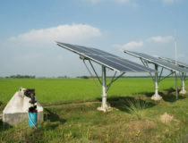 Bidders Go to Court Over Lack of Transparency in EESL's Solar Pumps Auction