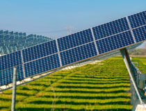 Hindustan Petroleum Releases Tender for a 1.3 MW Solar Project in Karnataka