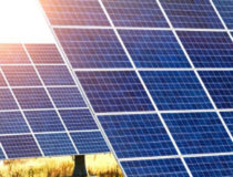 Jubilant Ingrevia to Buy Solar Power from AMP Energy's 15.5 MW Open Access Project